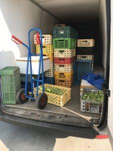 Ladungssicherung Gemüse